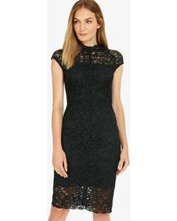 Phase Eight - Becky Lace Dress - Lyst