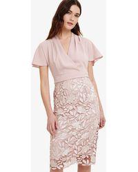 Phase Eight - Pink Moriko Dress - Lyst