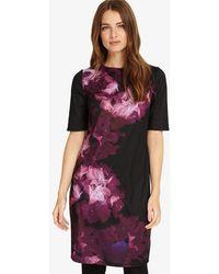 Phase Eight - Davina Print Dress - Lyst