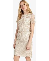 Phase Eight | Adelphia Lace Dress | Lyst