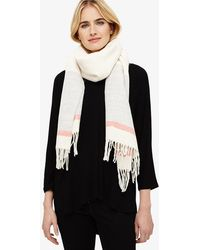 Phase Eight - Cilla Stripe Border Knitted Scarf - Lyst