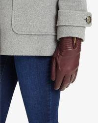 Phase Eight - Zip Glove - Lyst