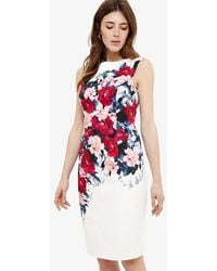 Phase Eight - Cassia Floral Printed Dress - Lyst