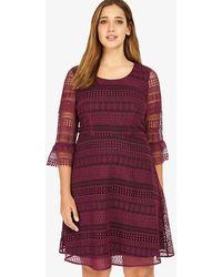 Phase Eight - Demelza Dress - Lyst