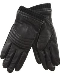 Emporio Armani - Gloves For Men On Sale - Lyst