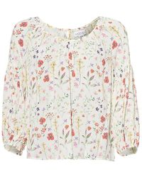 Velvet By Graham & Spencer - Womans Molina Top, Small Floral Print Blouse - Lyst