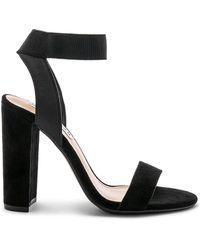 Steve Madden - Celebrate Sandal In Black - Lyst