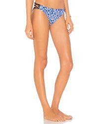 Nanette Lepore - Charmer Bikini Bottom In Blue - Lyst
