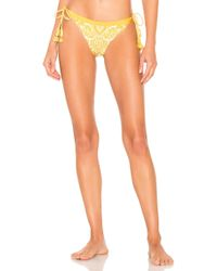 Agua Bendita - X Revolve Tammy Bikini Bottom - Lyst