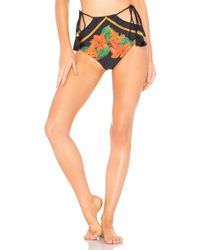 Agua de Coco - Leopard Embroidered Bikini Bottom In Black - Lyst