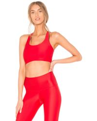 Strut-this - Kinzie Sports Bra - Lyst