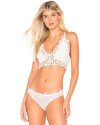 29314e2568 Free People - Miss Dazie Bralette - Lyst