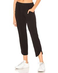 Velvet By Graham & Spencer - Nico Pant - Lyst