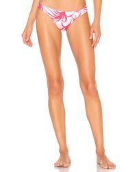 Mikoh Swimwear - Lima Bikini Top In Pink - Lyst