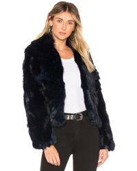 Adrienne Landau - Fur Collar Rabbit Jacket In Navy - Lyst