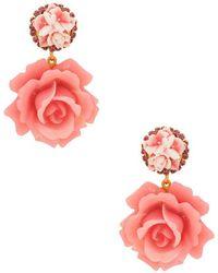 Elizabeth Cole - Adelade Earrings Earrings - Lyst