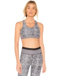 All Fenix - Striped Leopard Sports Bra - Lyst