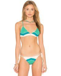 CA By Vitamin A - Nightbird Bikini Top - Lyst