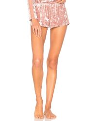 Only Hearts - Velvet Ground Shorts In Pink - Lyst