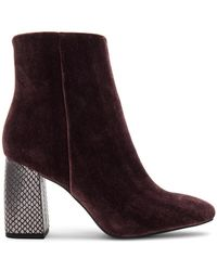 BCBGeneration - Allison Bootie - Lyst