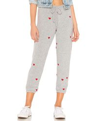 Chaser - Love Knit Slouchy Pant In Gray - Lyst