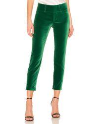 Alice + Olivia - Stacey Velvet Pant In Green - Lyst