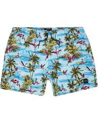 abeb75d0fa ASOS Asos Tall Swim Shorts In Blue Tiger Print Short Length in Blue for Men  - Lyst