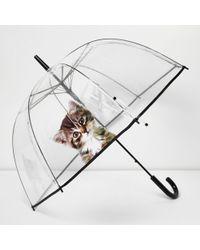 River Island - Transparent Kitten Umbrella - Lyst