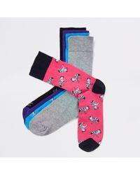 River Island - Zebra Print Socks Multipack - Lyst