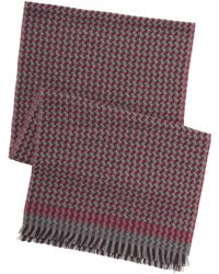 Robert Graham - Hayling Scarf - Lyst