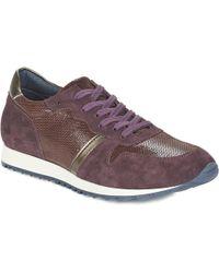 Betty London - Fleoni Shoes (trainers) - Lyst