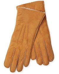 Maison Fabre - Mouton Trim Gloves - Lyst