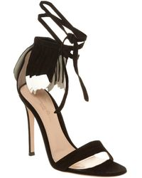 a50fea440b7f Lyst - Gianvito Rossi Suede   Mesh Lace-up Cutout Sandals in Black