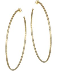 Jennifer Zeuner - Donnie Goldplated Large Hoop Earrings - Lyst