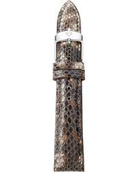 Michele Watches - Urban Vintage Snakeskin Watch Strap/18mm - Lyst