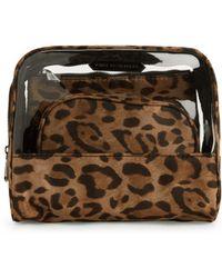 c9fe8cf7f666 Aimee Kestenberg - 3-piece Leopard-print Cosmetic Pouch - Lyst