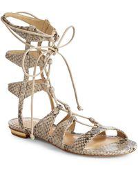 Schutz - Erlina Leather Snake-print Gladiator Sandals - Lyst