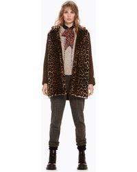 Scotch & Soda - Contrast Sleeve Leopard Print Coat - Lyst