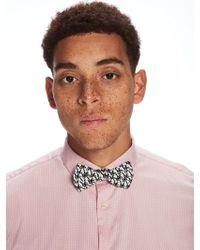 Scotch & Soda - Printed Bow Tie - Lyst