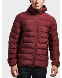 Fred Perry - Padded Jacket - Lyst