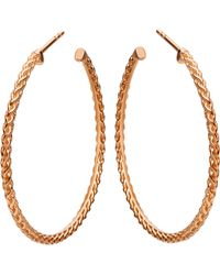 Astley Clarke - Large Spiga 18ct Rose Gold-plated Hoop Earrings - Lyst