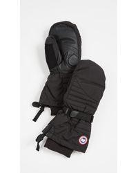 Canada Goose - Arctic Down Mittens - Lyst