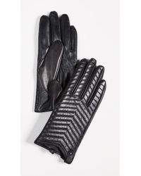 Mackage - Cano Gloves - Lyst