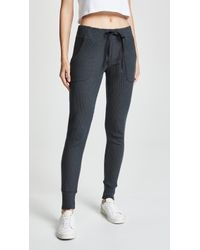Spiritual Gangster - Rib Tapered Jogger - Lyst