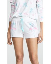 Pj Salvage - Peachy Lounge Shorts - Lyst