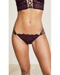 Thistle & Spire - Constellation Bikini Briefs - Lyst