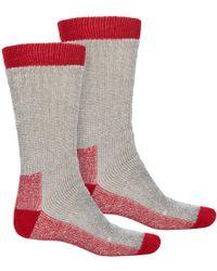 Terramar - Stalker Thermal Boot Socks - Lyst