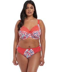 8011beb04d Elomi Raquel Full Cup Berry Bra in Red - Lyst