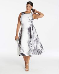Coast - Grove Print Fit And Flare Dress - Lyst
