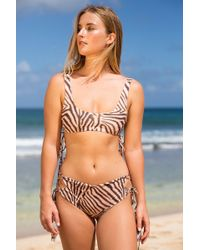 Acacia Swimwear - 2019 Hunter Top In Zebra - Lyst